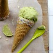 avoc ice cream