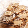Ginger-bread-web-300x300